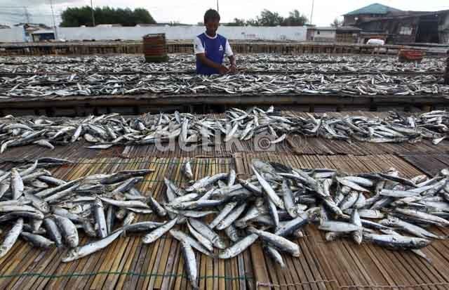 Pengusaha Dukung Pembatasan Impor Ikan Kaleng, Tapi Ada Syaratnya