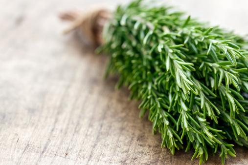 Minyak Eucalyptus dan Rosemary, Herbal Kuno yang Ampuh Atasi Penyakit (2)