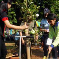 Pemerintah Dapat Komitmen Dana 1 Miliar Pohon dari Swasta