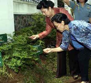 Ibu Ani Tinjau Taman Herbalia