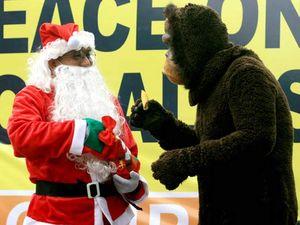 Sinterklas Berbagi Pisang dengan Orangutan