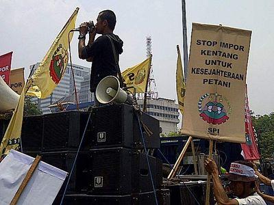 Petani Kentang Demo Istana