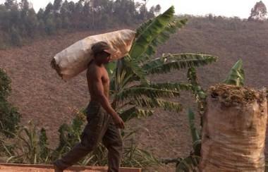 Wah! Budaya Madagaskar Bersumber dari Indonesia