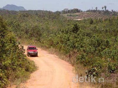 Hutan Rusak, Menu Wajib Susuri Perbatasan