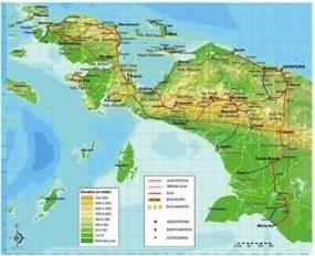 Soal Kekerasan di Papua, TPM Usul Dibentuk Densus Anti Separatisme