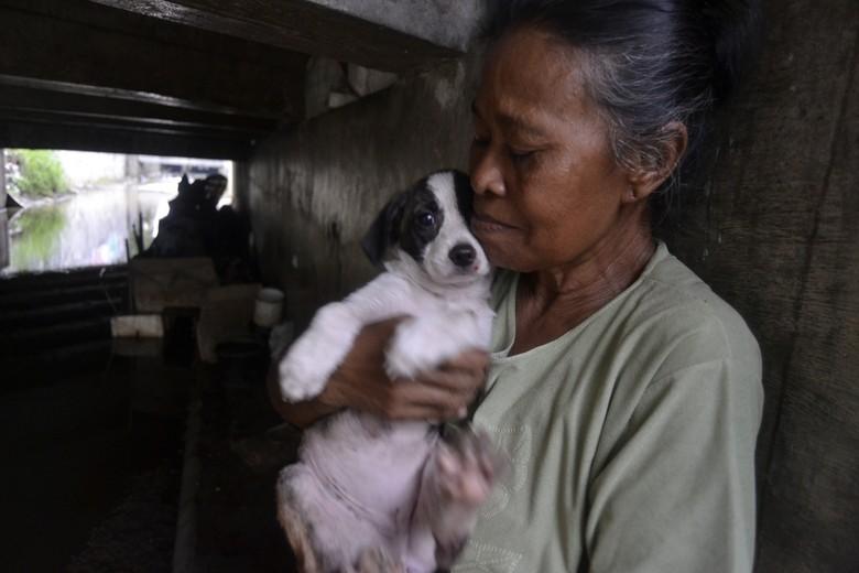 Kisah Mak Tun, Wanita Sebatang Kara Pelindung Anjing di Kolong Jembatan