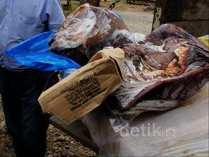 40 Ton Daging Sapi Ilegal Diamankan