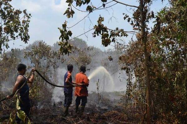 Kabut Asap, Ratusan Hektare Lahan Gambut di Siak Riau Masih Membara