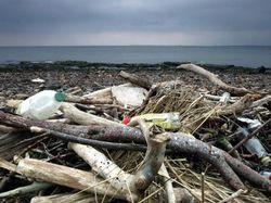 Benda Paling Aneh yang Ditemukan di Pantai Inggris