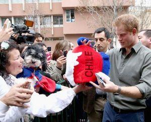 Kunjungi Chile, Pangeran Harry Dicium Banyak Fans Wanita