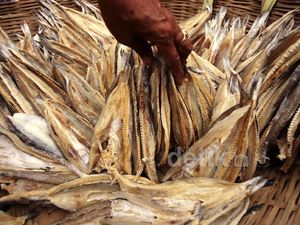 Selain Impor, RI Juga Ekspor Ikan Asin ke Sri Lanka