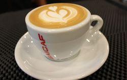 SAICAF Coffee Perkenalkan Dua Blend Biji Kopi Premium di Indonesia