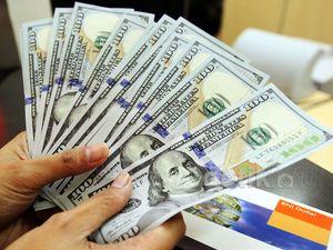 Dolar Perkasa di Rp 12.300