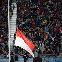 Indonesia Ditunjuk Jadi Tuan Rumah Asian Games, Li Na Gantung Raket