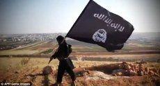 17 Militan ISIS dan 9 Warga Sipil Irak Tewas Dibombardir Koalisi AS
