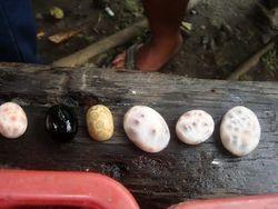 Penjual Batu Akik di Nusakambangan Menyeruak di Kesibukan Eksekusi Mati