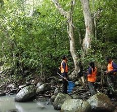 Serunya Jelajahi Madapangga, Hutan di NTB dengan Beragam Fauna