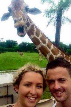 Jepret! Jerapah Ikut Selfie Bareng Turis di Amerika