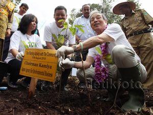 APP Restorasi Sejuta Hektar Hutan Indonesia