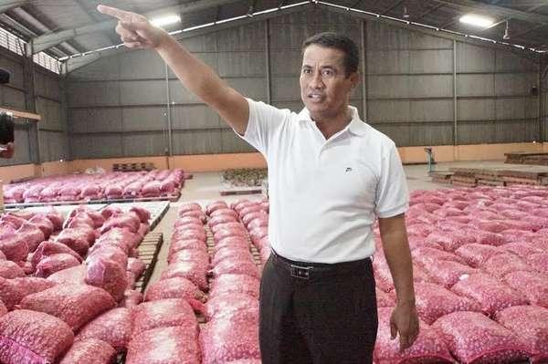 Mentan Pilih Impor Sapi Bakalan untuk Alokasi Akhir 2015