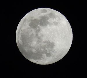 Menyentuh Bulan di Papua
