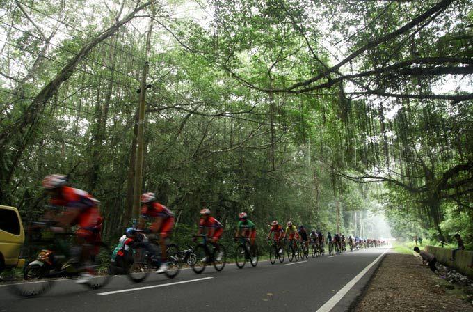 Para pebalap melewati hutan Limbo Panti.