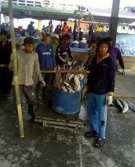 Seluruh Nelayan dan Petani di RI Diharapkan Jadi Peserta BJPS