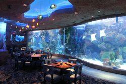 Asyiknya Menikmati Sajian Seafood Mewah di Restoran Bawah Laut Dunia (1)