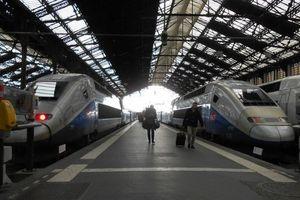 Terungkap! Keliling Eropa Lebih Cepat Naik Kereta Daripada Pesawat