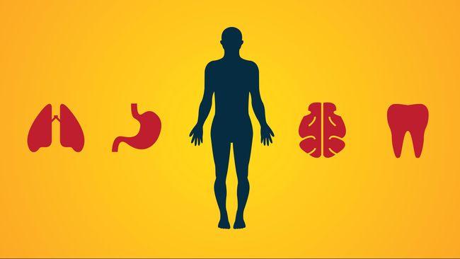 Dalam kadar tertentu, tubuh manusia bisa menolerir radiasi. Hanya saja ketika ada paparan berlebihan, sejumlah kemungkinan bahaya kesehatan mulai mengintai.