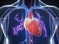 Cangkok Jantung Dengan Jantung Tidak Berdenyut