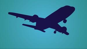 Pesawat Tergelincir di India, Setidaknya Dua Orang Tewas