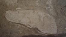 Ahli Ungkap Jejak Neanderthal 100 Ribu Tahun Lalu