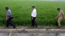 Mentan Risau Jutaan Orang Tinggalkan Pertanian 'Lari' ke ISIS