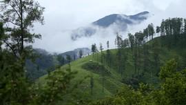 Tim Patroli Gunung Leuser Aceh Diserang Perusak Hutan
