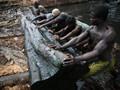 Kayu, Sumber Energi Warga Miskin Nigeria