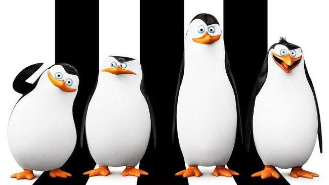 Film ini mengisahkan empat kawanan penguin, Skipper (Tom McGrath), Kowalski (Chris Miller), Rico (Conrad Vernon), serta Private (Christopher Knights).