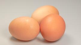 Alasan Selalu Dapat Telur & Kacang Hijau Usai Donor Darah