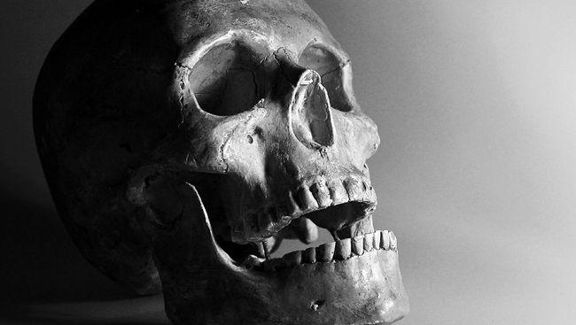 Barak militer berusia 2.000 tahun lengkap dengan rangka manusia kuno ditemukan di Roma saat petugas sedang melakukan konstruksi jalur kereta bawah tanah.