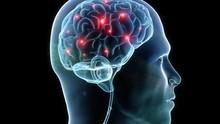 Teknologi Chip di Otak Bantu Difabel Menulis Pakai Pikiran