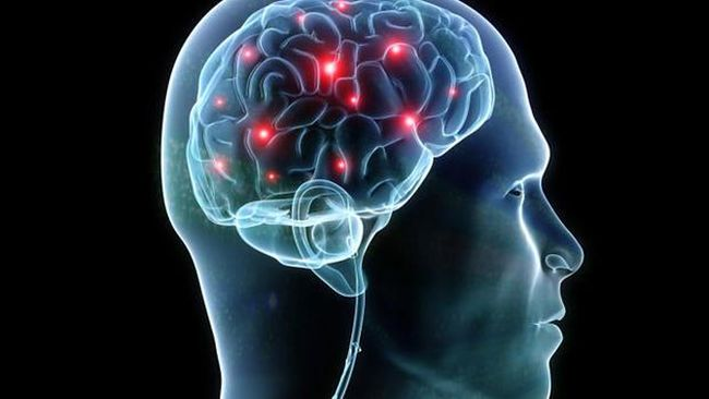 Studi terbaru menunjukkan pandemi Covid-19 juga dapat mengubah otak setiap orang walaupun tidak terinfeksi virus corona.