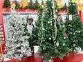Jepang Jual Pohon Natal Rp24,2 Miliar