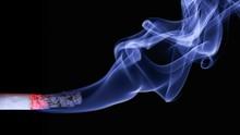 Philip Morris Ramal Penjualan Rokok di Dunia Berakhir