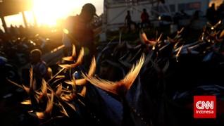 Derita Nelayan saat Pandemi: Ikan Murah hingga Berutang