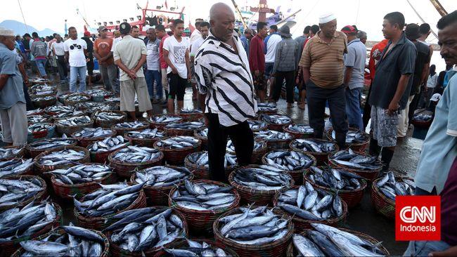 BPS mencatat nilai ekspor ikan nasional pada Oktober 2015 sebesar US$244,58 juta, jauh di atas nilai impornya yang hanya US$12,54 juta.