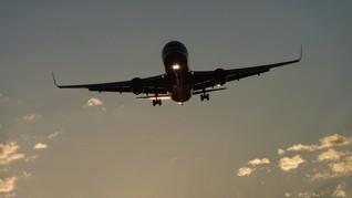 Terbang ke Destinasi Misterius bersama Maskapai Selandia Baru