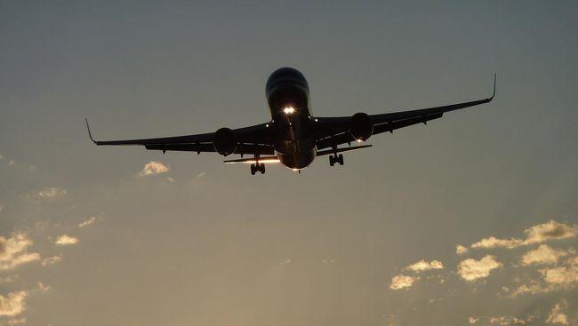Jokowi mendiskon tiket pesawat ke 10 destinasi wisata sebesar 30 persen agar virus corona tak 'menginfeksi' ekonomi RI.