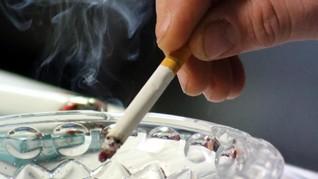 Alasan Kenaikan Cukai Tak Efektif Tekan Jumlah Perokok