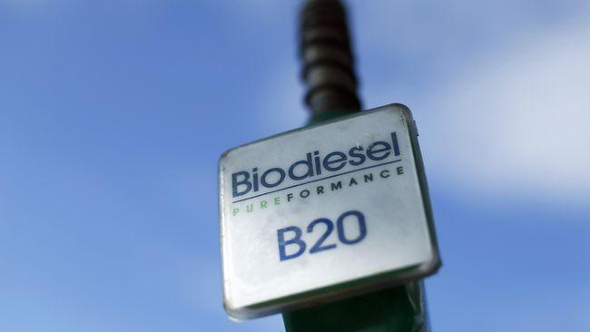 Harga CPO Anjlok, Pemerintah Turunkan Harga Pasar Biodiesel