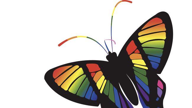 BKKBN mengajak setiap kepala daerah untuk memerangi LGBT terkait dengan proses pembangunan.